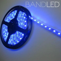 Tira LED Multicolor BandLed
